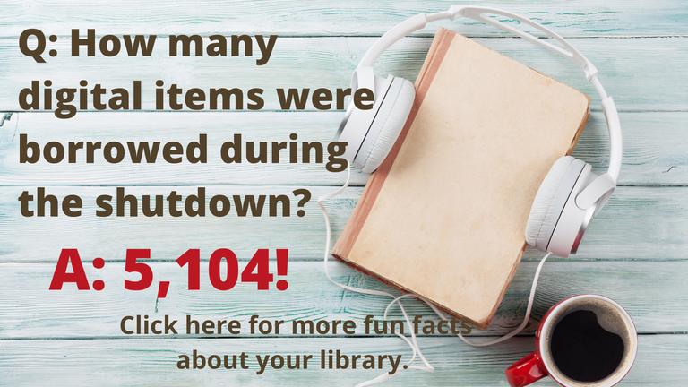 Fun Fact shutdown checkouts