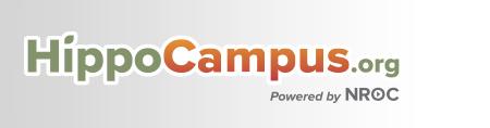 Hippo Campus.jpg